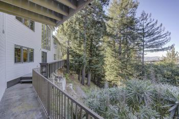 Mt. Tamalpais executive residence balcony and trees